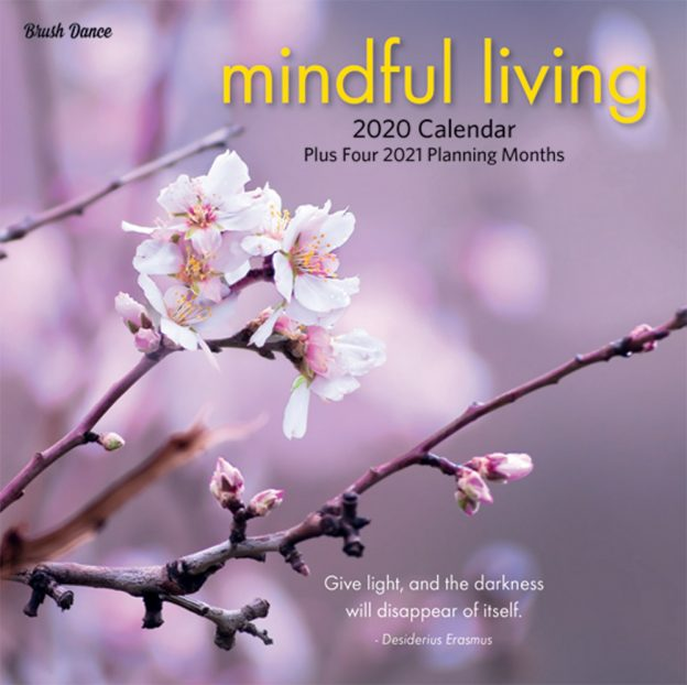 Mindful Living 2020 7 x 7 Inch Monthly Mini Wall Calendar by Brush Dance, Art Quotes Photography Inspiration