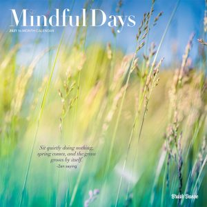 Mindful Days 2021 12 x 12 Inch Monthly Square Wall Calendar by Brush Dance, Art Paintings Inspirational Quotes
