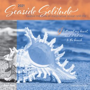 Seaside Solitude 2021 12 x 12 Inch Monthly Square Wall Calendar by Brush Dance, Nature Inspiration Seashore